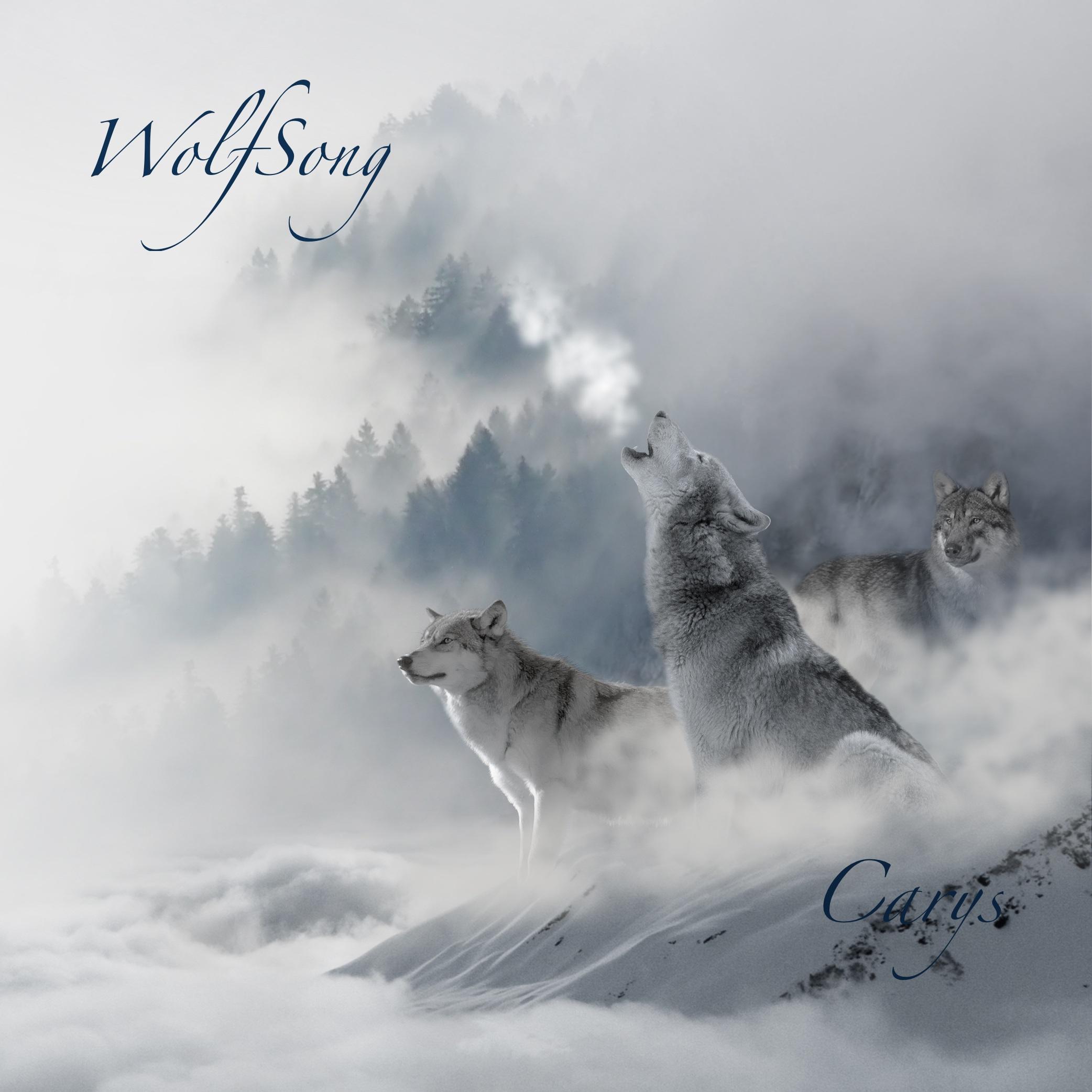 WolfSong album art